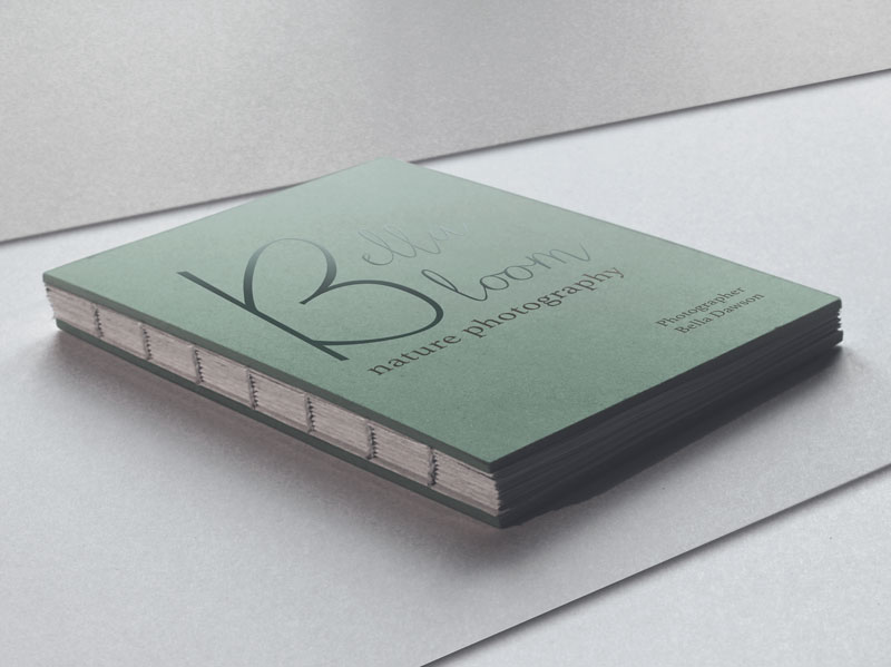 bb-cover